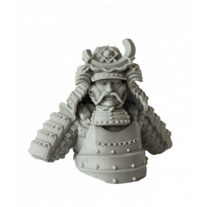 Takeda Samurai